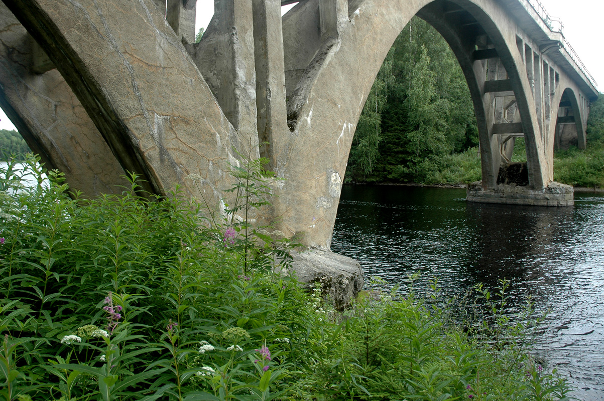 July 27, 2008. Railway Bridge across the Jänisjoki River