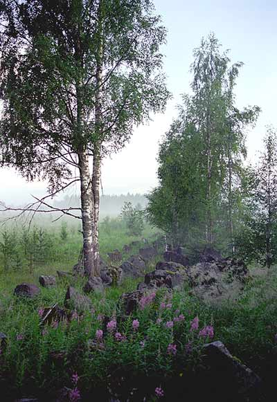 "2003. The Military-historical Complex ""Kollasjärvi"""