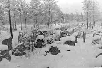March 1940. Kollaa. Finnish lines
