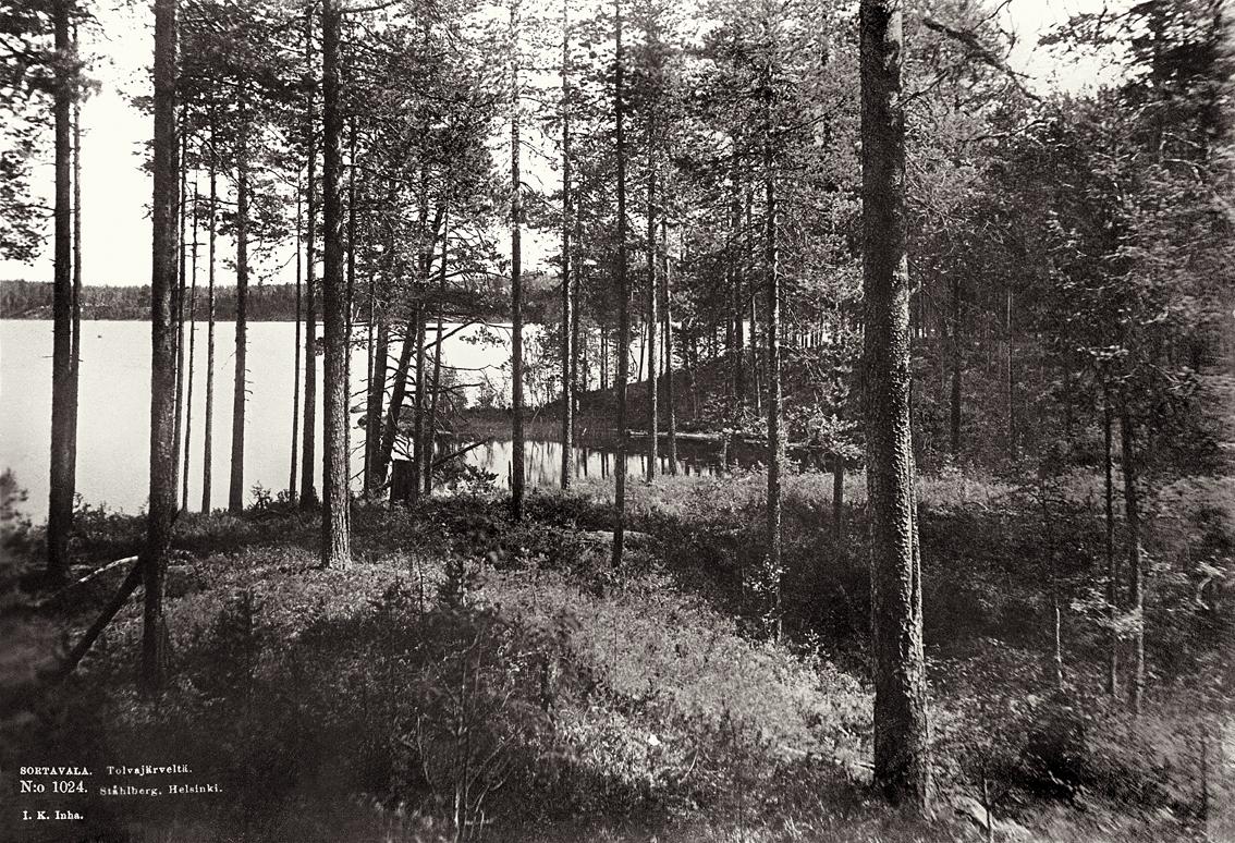 1893 год. Толваярви