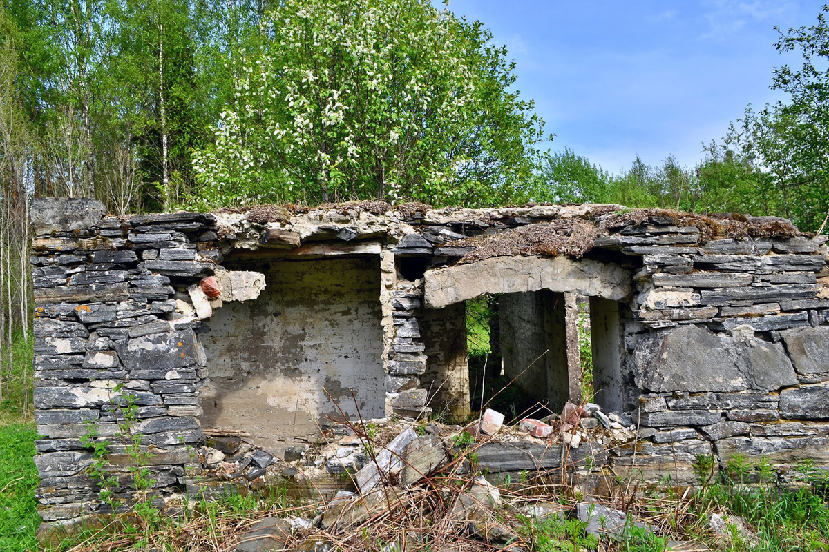 May 2014. Jukakoski. Ruins of Jukka's farm