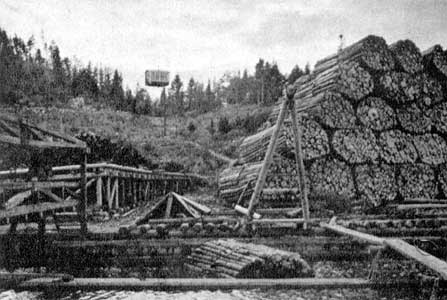 1930's. Pitkäranta. The mass of logs