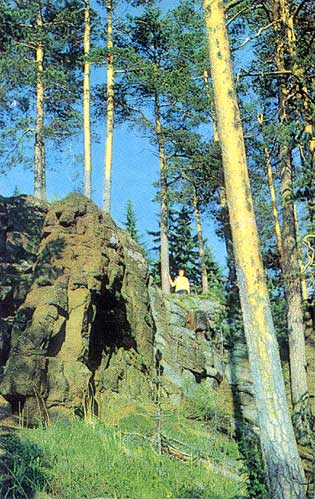 1975. Valaam. Pines and rocks