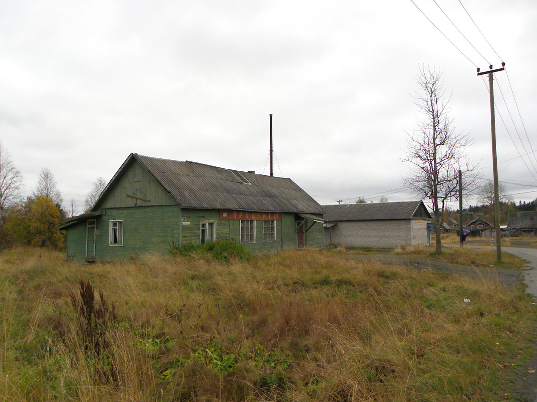 October 7, 2012. Derevjanka station. Shop