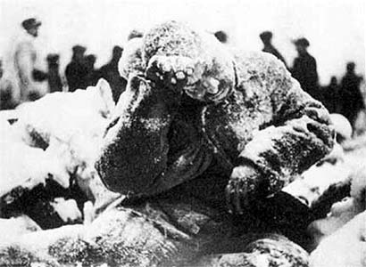 January 1940. The frozen Soviet soldier