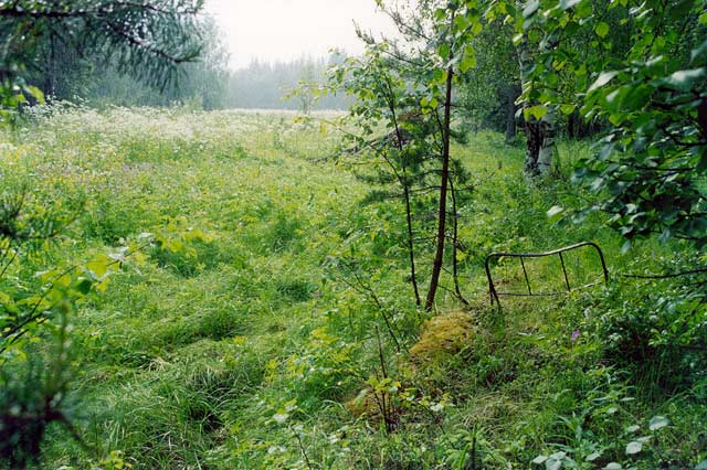 July 2003. Kalevala (Uhtua) district. Kintezma. The remnants of the internee-camp for the citizens of Suomussalmi